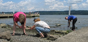 Teachers study project sea level rise impacts at Piermont
