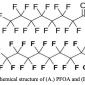 Chemical Structure of PFOA and PFOS